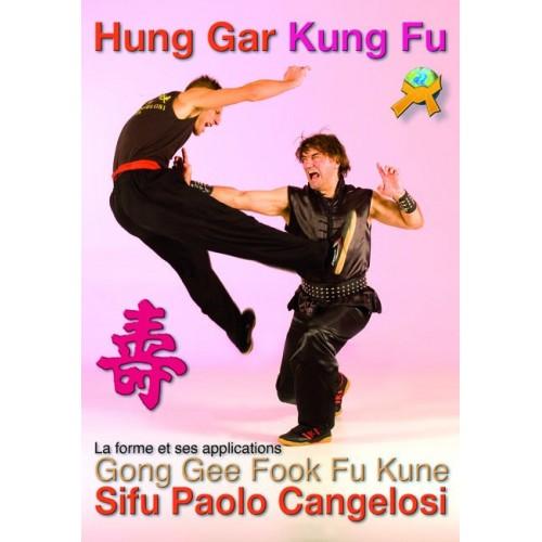 LIBRO : Hung gar kuen kung fu. La forme et ses applications