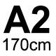 A2 - 170