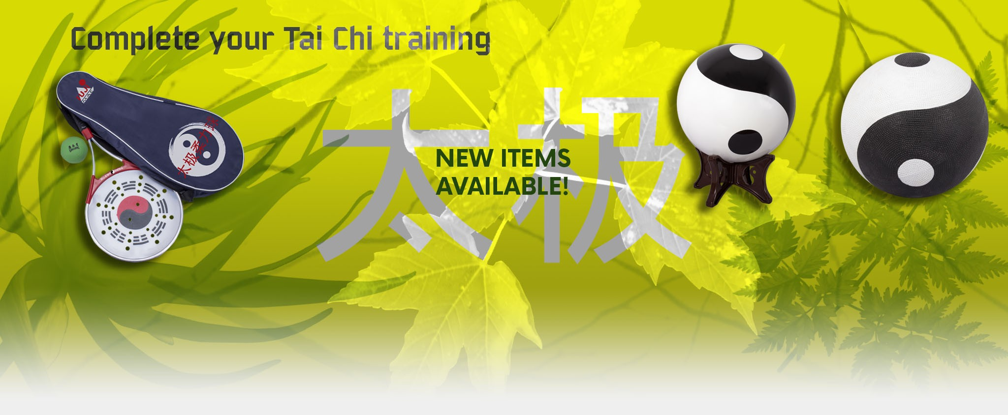 Tai Chi new products